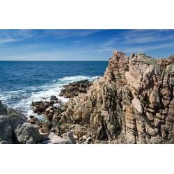 Fotomural mar y rocas