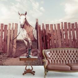Mural en vinilo caballo
