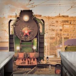 Fotomural locomotora