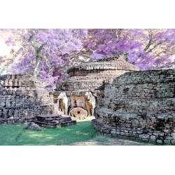 Fotomural jardín en ruinas