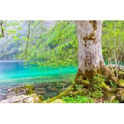 Fotomural agua turquesa
