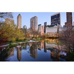 Fotomural Central Park