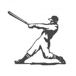 Vinilo de deportes béisbol
