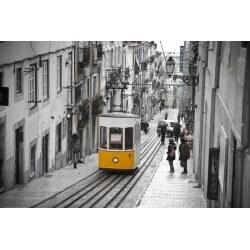 Fotomural tranvía de Lisboa