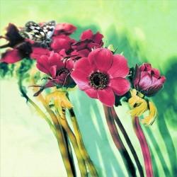 Fotomural flores con mariposa