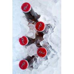 Fotomural cervezas en hielo