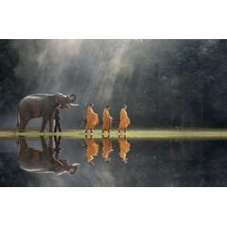 Fotomural budismo Tailandia