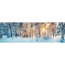 Fotomural deshielo bosque