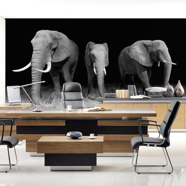 Fotomural familia de elefantes