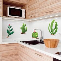 Vinilos cactus