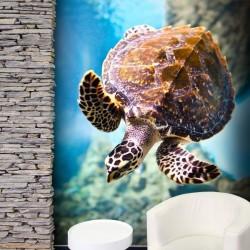 Fotomural mar tortuga