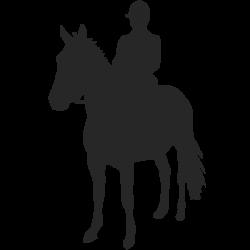 Vinilo hombre a caballo
