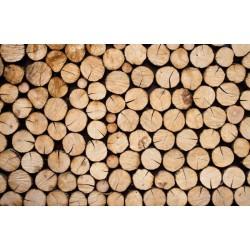 Mural de pared maderas