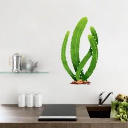 Vinilos cactus San Pedro