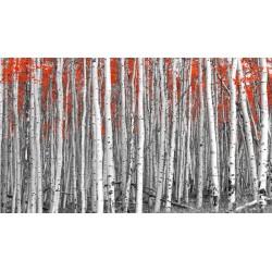 Fotomural árboles rojos