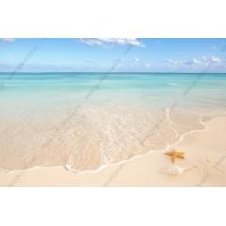 Fotomural playa y estrella del mar