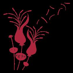 Vinilo de flores 4