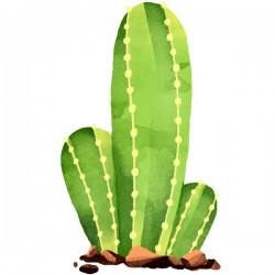 Vinilo cactus cereus repandus
