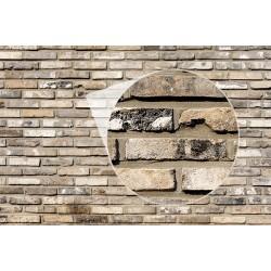Fotomural pared de ladrillo