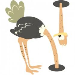 Vinilo avestruz perdida