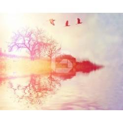 Fotomural río anaranjado
