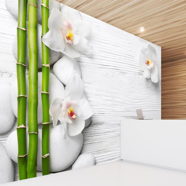 Fotomural bambú