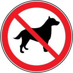 Pegatina prohibido entrada animales