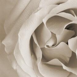 Vinilo para muebles rosa blanca