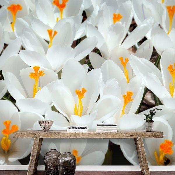 Mural decorativo azafrán blanco