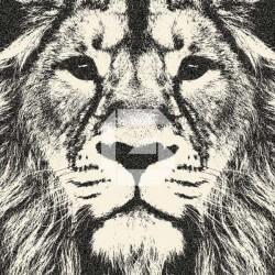 Fotomural cabeza de león