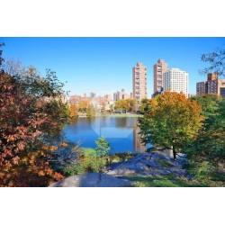 Fotomural lago en la ciudad