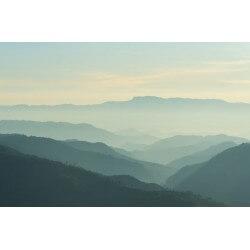 Vinilo niebla en la montaña