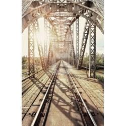 Fotomural tren bajo el puente