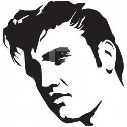 Vinilo de Elvis Presley