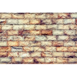 Mural en vinilo pared de piedra 2