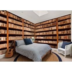 Fotomural biblioteca 1