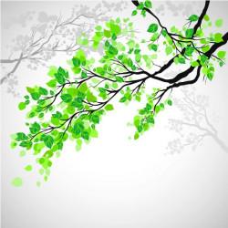 Vinilo al ácido árboles