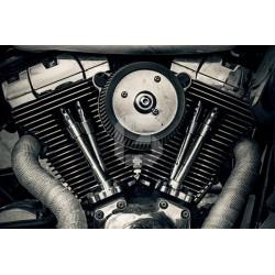 Vinilo muebles motor Harley Davidson