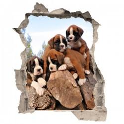 Vinilo de trampantojo perros