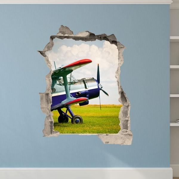 Vinilo de trampantojo avioneta