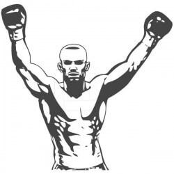 Vinilo boxeador