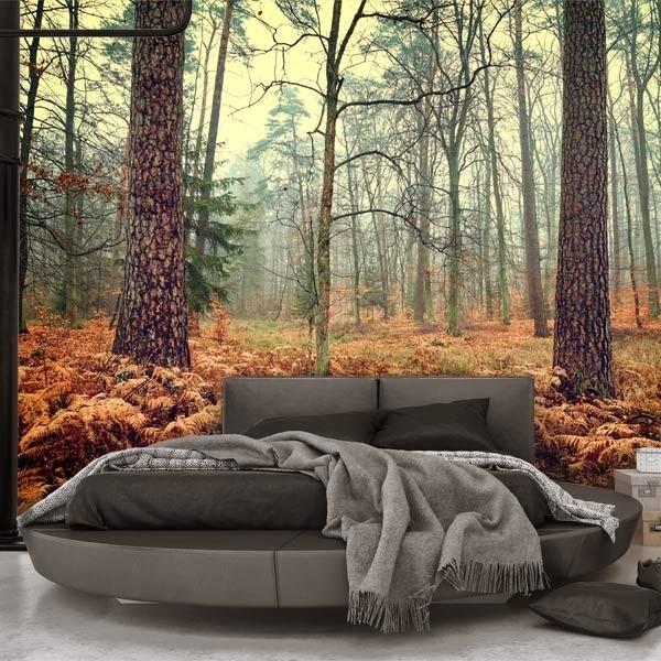 Fotomural otoño en la floresta
