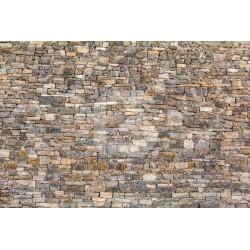 Fotomural pared de piedra 5