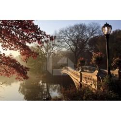 Mural puente en Central Park