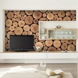 Mural de pared maderas 2