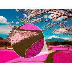 Fotomural Parque Fuji-Hakone-Izu