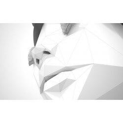 Vinilo mesa ikea rostro 3D
