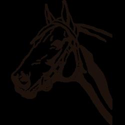 Vinilo de animales caballo