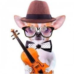 Vinilo de pared perro con violín