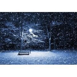 Fotomural de Nevando de noche
